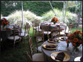 outdoor wedding catering with beautiful lush garden as a backdrop