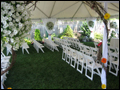 your backyard wedding will happen in every weather with our durable tents